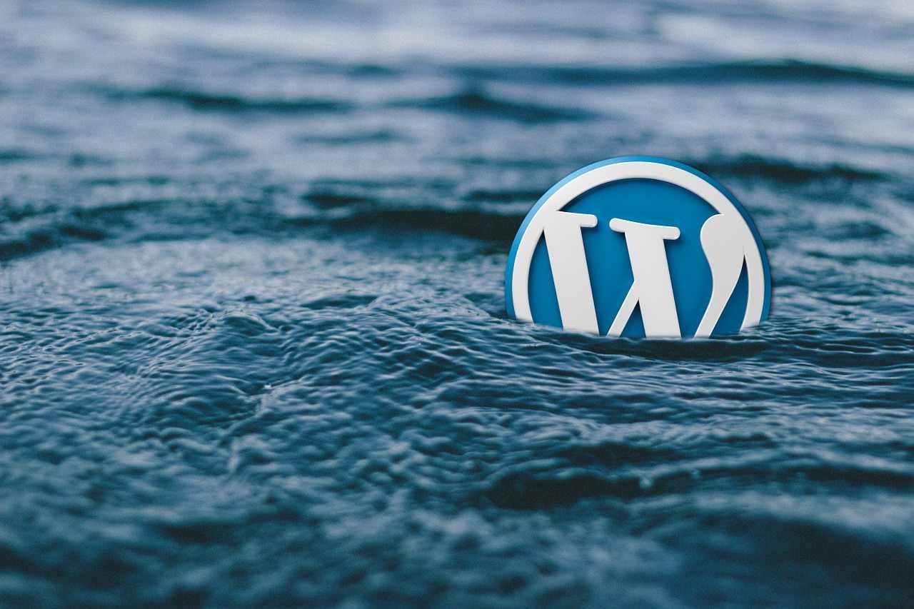Wordpress geht unter
